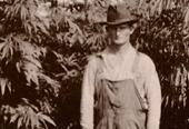Acres Craft Cannabis