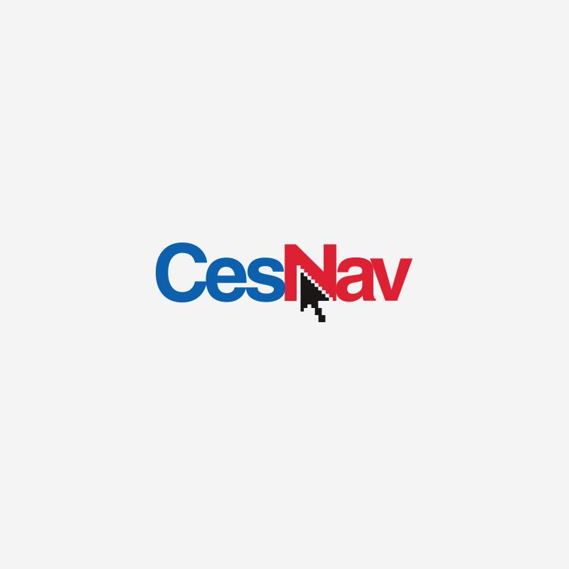 CesNav - Cessna Flight Training Program